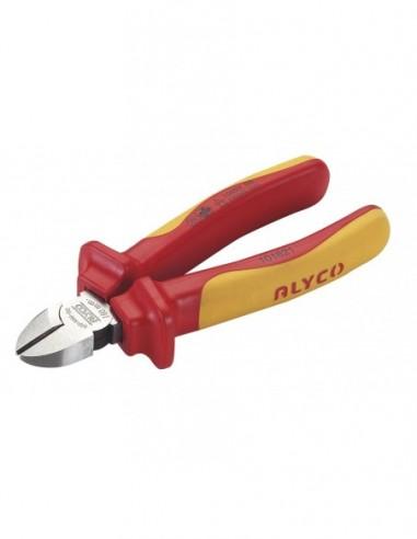 Generador de vapor SG 10